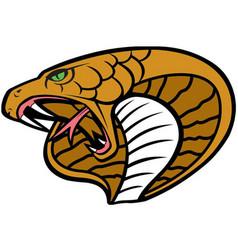 cobra head logo mascot vector image