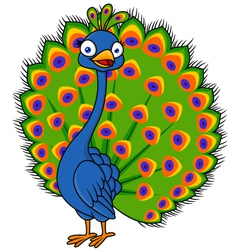 Cute Peacock cartoon vector