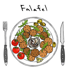 Falafel arugula herb leaves lemon tomato olive vector