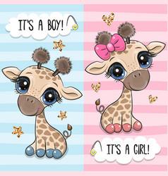 Greeting card with two cute cartoon giraffes vector