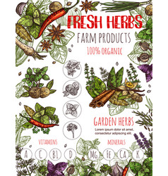Herbs sketch poster with condiments and seasoning vector