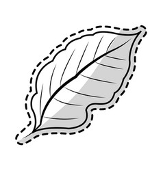 Leaf plant icon image vector