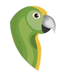 parrot bird isolated icon vector image