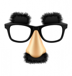 funny mask vector image