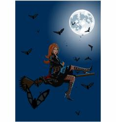beautiful witch sitting on broom vector image