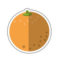 Cartoon orange nutrition healthy diet vector