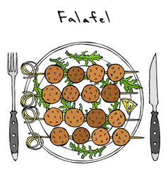 Falafel on skewer on plate with arugula leaves vector