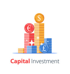 Financial success secure capital investment vector
