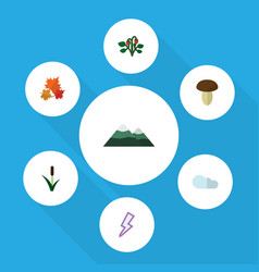 Flat icon ecology set of berry champignon vector