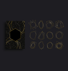 gold and black luxury card background collection vector image