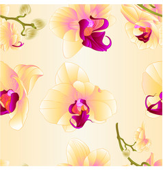 seamless texture yellow orchid phalaenopsis vector image