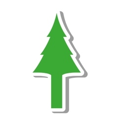 Tree pine natural isolated icon vector
