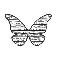 Wooden butterfly animal silhouette sketch vector