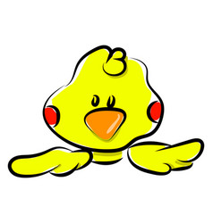 yellow small duck on white background vector image