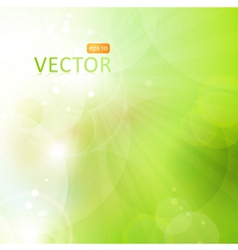 Abstract green bokeh background with lights vector image vector image
