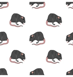 Domestic Rats Seamless Pattern vector image vector image