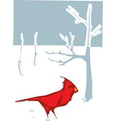 Cardinal Christmas vector image vector image