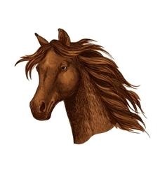 Arabian brown horse race sport emblem vector image