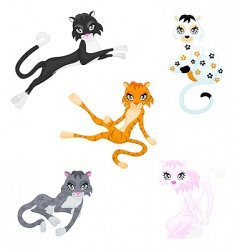graceful cats vector image