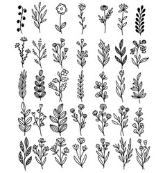0130 hand drawn flowers doodle vector
