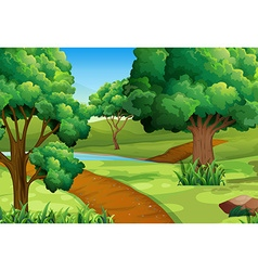Scene with trees along trail vector