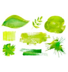 set green watercolor design labels vector image