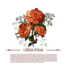 vintage flowers set over white background vector image