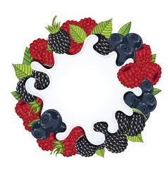 yogurt splash isolated on wild berries vector image