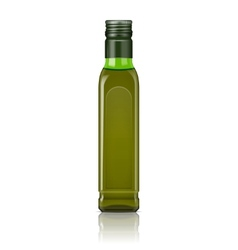 Olive oil bottle template vector image vector image