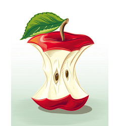 Apple core vector