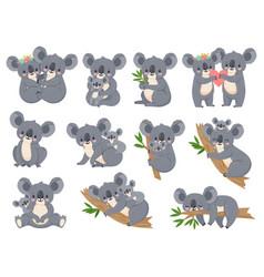 cute koala and baby cartoon little koalas vector image