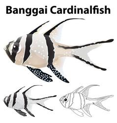 doodle animal for banggai cardinalfish vector image
