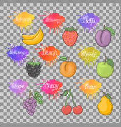 fruits healthy set isolated vector image