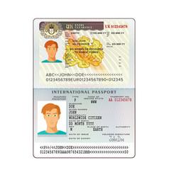 International passport with united kingdom visa vector