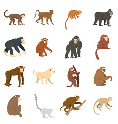 monkey types icons set in flat style vector image