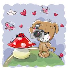 cute cartoon dog with a camera vector image vector image