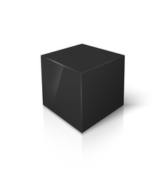 black blank box isolated on white vector image