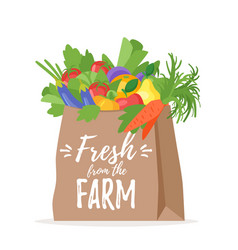 paper bag with vegetables vector image