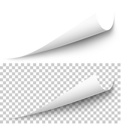 realistic white paper corner with shadow vector image