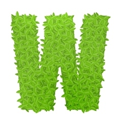 Uppecase letter W consisting of green leaves vector image