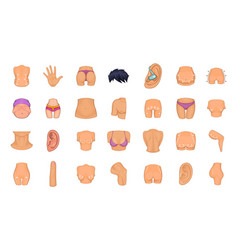human body icon set cartoon style vector image vector image