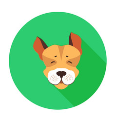 happy muzzle of jack russell terrier flat icon vector image vector image