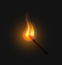 burning match on a black background vector image
