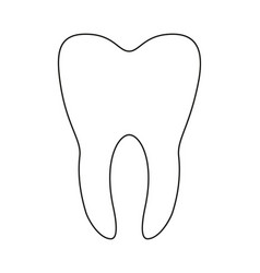 line art black and white healthy tooth vector image