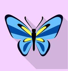 nice blue butterfly icon flat style vector image