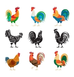Roosters and rooster silhouettes set vector image