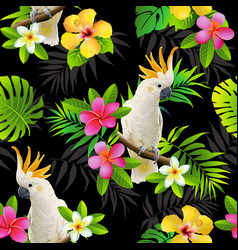 Seamless pattern parrots cockatoo on the vector