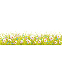 Spring background with grass and flowers border on vector