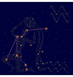 Zodiac sign Aquarius over starry sky vector image