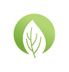 green leaf emblem eco logo bio sign vector image vector image